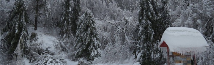 Hilfseinsatz in Slowenien