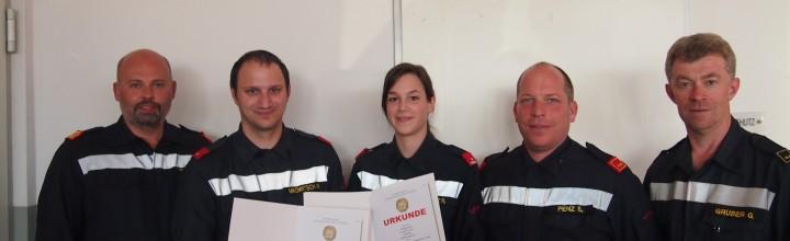Feuerwehrleistungsabzeichen in Gold 2017
