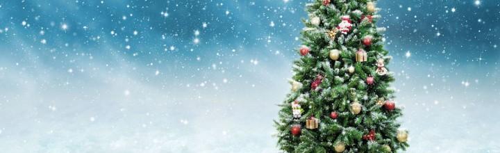 Frohe Feiertage und ein schönes neues Jahr